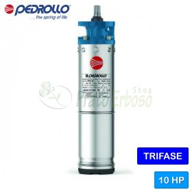 """6PD/10 - Motor rewindable 6"""" 10 HP three phase"""