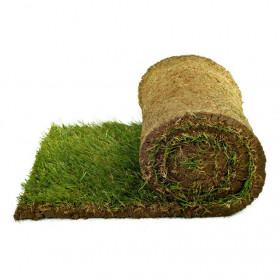 110 square meters of lawn that is ready in rolls