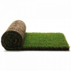 200 square meters of lawn ready in rolls